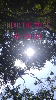 HEAR THE VOICE OF FOREST